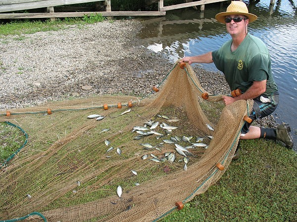 Jay Hafner, State District Fisheries Biologist, sampled the Club lakes on 19 July 10.