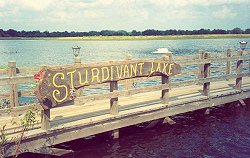 Sturdivant Lake sign made from Black Walnut slab